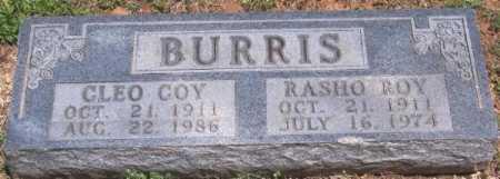 BURRIS, CLEO COY - Marion County, Arkansas | CLEO COY BURRIS - Arkansas Gravestone Photos