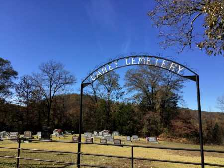 *CANEY CEMETERY GATE,  - Marion County, Arkansas |  *CANEY CEMETERY GATE - Arkansas Gravestone Photos