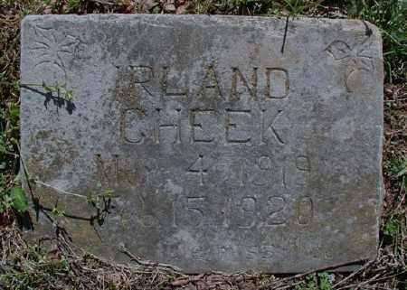 CHEEK, IRLAND - Marion County, Arkansas | IRLAND CHEEK - Arkansas Gravestone Photos