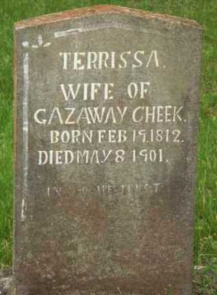 CHEEK, TERRISSA - Marion County, Arkansas | TERRISSA CHEEK - Arkansas Gravestone Photos