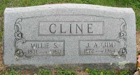 KEETER CLINE, MILLIE S. - Marion County, Arkansas | MILLIE S. KEETER CLINE - Arkansas Gravestone Photos