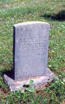 COKER, ANGELINE - Marion County, Arkansas | ANGELINE COKER - Arkansas Gravestone Photos