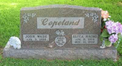 AKINS COPELAND, ELIZA NAOMI - Marion County, Arkansas | ELIZA NAOMI AKINS COPELAND - Arkansas Gravestone Photos