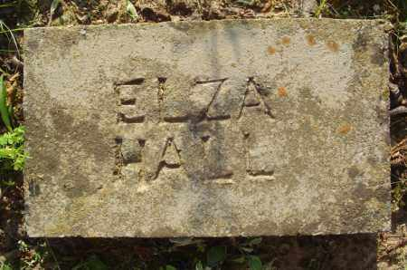 HALL, ELZA - Marion County, Arkansas | ELZA HALL - Arkansas Gravestone Photos