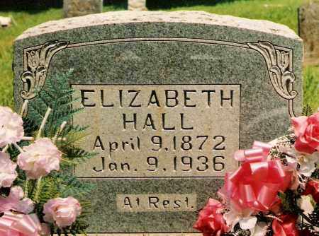 HALL, ELIZABETH - Marion County, Arkansas | ELIZABETH HALL - Arkansas Gravestone Photos