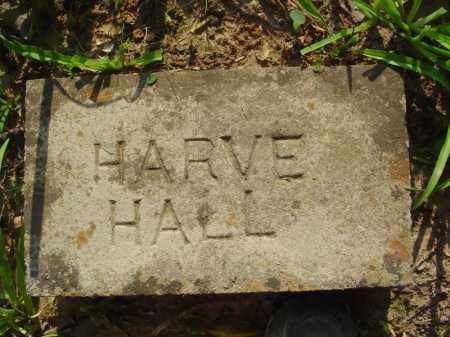 HALL, HARVE - Marion County, Arkansas | HARVE HALL - Arkansas Gravestone Photos