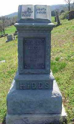 HIGGS, JOEL - Marion County, Arkansas | JOEL HIGGS - Arkansas Gravestone Photos
