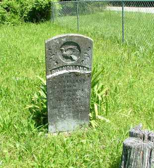 BURCH HOLLAND, RACHEL JANE - Marion County, Arkansas | RACHEL JANE BURCH HOLLAND - Arkansas Gravestone Photos