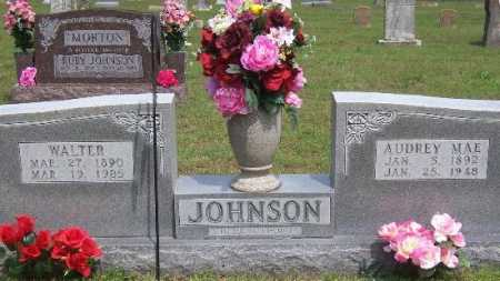 JOHNSON, AUDREY MAE - Marion County, Arkansas | AUDREY MAE JOHNSON - Arkansas Gravestone Photos