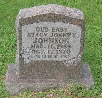 JOHNSON, STACY JOHNNY - Marion County, Arkansas | STACY JOHNNY JOHNSON - Arkansas Gravestone Photos