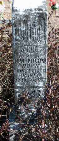 MILUM, JENNIE - Marion County, Arkansas | JENNIE MILUM - Arkansas Gravestone Photos