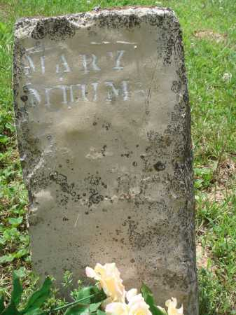MILUM, MARY - Marion County, Arkansas | MARY MILUM - Arkansas Gravestone Photos