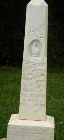 MORGAN, A. PARSLEE - Marion County, Arkansas | A. PARSLEE MORGAN - Arkansas Gravestone Photos