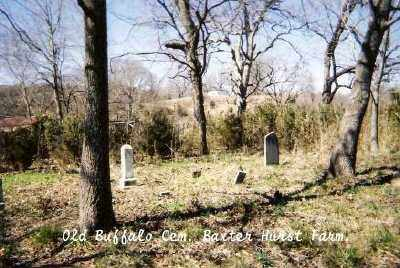 *OLD BUFFALO CEMETERY,  - Marion County, Arkansas |  *OLD BUFFALO CEMETERY - Arkansas Gravestone Photos