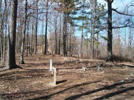 *ELM SPRINGS OVERVIEW,  - Marion County, Arkansas |  *ELM SPRINGS OVERVIEW - Arkansas Gravestone Photos