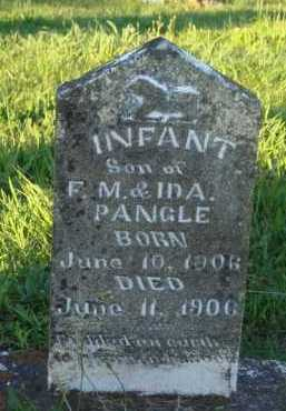 PANGLE, INFANT SON - Marion County, Arkansas | INFANT SON PANGLE - Arkansas Gravestone Photos