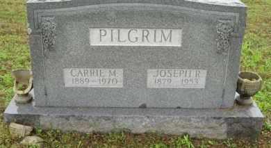 "PILGRIM, JOSEPH R. ""JOE"" - Marion County, Arkansas | JOSEPH R. ""JOE"" PILGRIM - Arkansas Gravestone Photos"