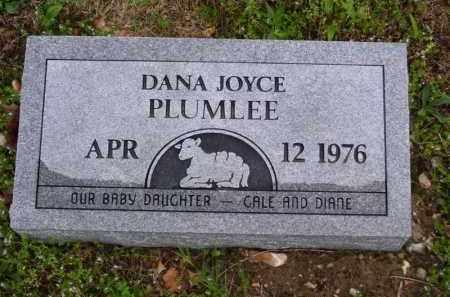 PLUMLEE, DANA JOYCE - Marion County, Arkansas | DANA JOYCE PLUMLEE - Arkansas Gravestone Photos