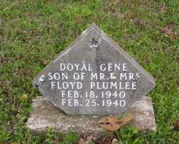 PLUMLEE, DOYAL GENE - Marion County, Arkansas | DOYAL GENE PLUMLEE - Arkansas Gravestone Photos