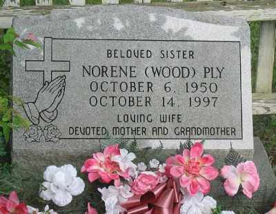 PLY, NORENE - Marion County, Arkansas | NORENE PLY - Arkansas Gravestone Photos