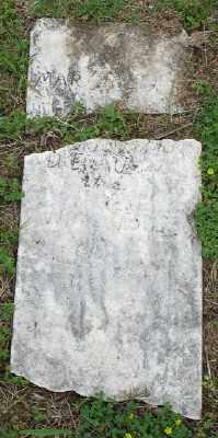 RILEY, MARY - Marion County, Arkansas | MARY RILEY - Arkansas Gravestone Photos