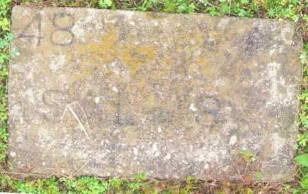SALMS, (NO FIRST NAME LISTED) - Marion County, Arkansas | (NO FIRST NAME LISTED) SALMS - Arkansas Gravestone Photos