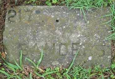 SANDERS, ADULT - Marion County, Arkansas | ADULT SANDERS - Arkansas Gravestone Photos