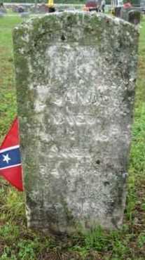SANDERS, THOMAS LEMUEL - Marion County, Arkansas | THOMAS LEMUEL SANDERS - Arkansas Gravestone Photos