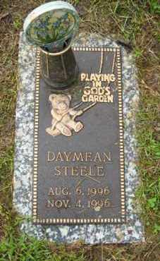 STEELE, DAYMEAN - Marion County, Arkansas | DAYMEAN STEELE - Arkansas Gravestone Photos