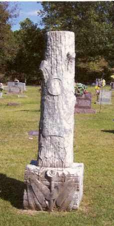 WAGONER, WALTER J. - Marion County, Arkansas | WALTER J. WAGONER - Arkansas Gravestone Photos