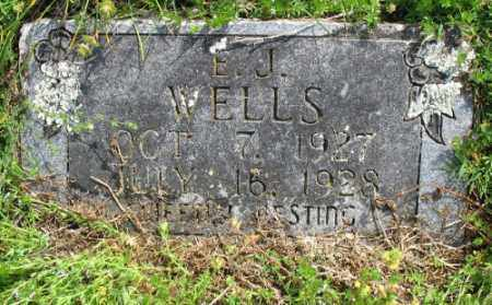 WELLS, E. J. - Marion County, Arkansas | E. J. WELLS - Arkansas Gravestone Photos