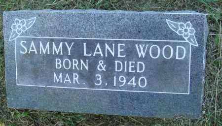 WOOD, SAMMY LANE - Marion County, Arkansas | SAMMY LANE WOOD - Arkansas Gravestone Photos