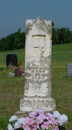 CASEY, ELISHA - Miller County, Arkansas | ELISHA CASEY - Arkansas Gravestone Photos
