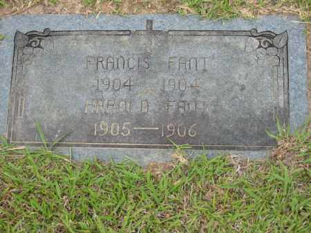 FANT, FRANCIS - Miller County, Arkansas | FRANCIS FANT - Arkansas Gravestone Photos