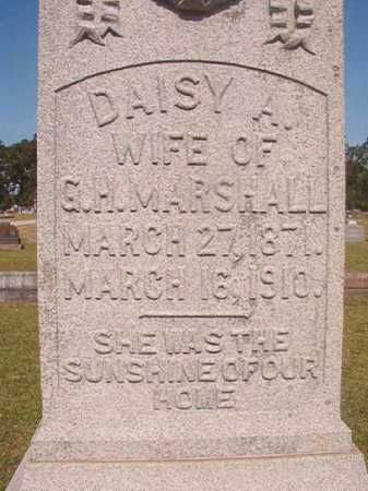 MARSHALL, DAISY A (CLOSE UP) - Miller County, Arkansas | DAISY A (CLOSE UP) MARSHALL - Arkansas Gravestone Photos