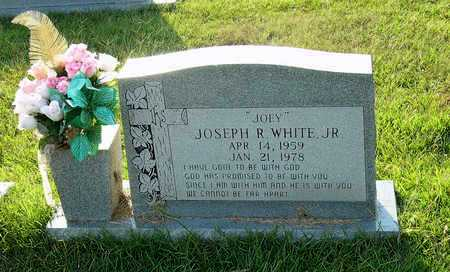 "WHITE, JR., JOSEPH R""JOEY"" - Miller County, Arkansas 