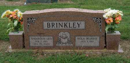 BRINKLEY, ANDERSON LEO - Mississippi County, Arkansas | ANDERSON LEO BRINKLEY - Arkansas Gravestone Photos