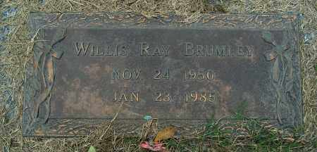 BRUMLEY, WILLIS RAY - Mississippi County, Arkansas | WILLIS RAY BRUMLEY - Arkansas Gravestone Photos