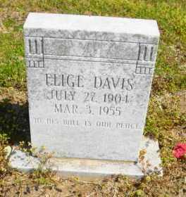 DAVIS, ELIGE - Mississippi County, Arkansas | ELIGE DAVIS - Arkansas Gravestone Photos