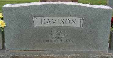 DAVISON, LEMOIN - Mississippi County, Arkansas | LEMOIN DAVISON - Arkansas Gravestone Photos