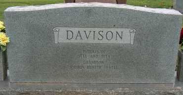 DAVISON, LEMOIN - Mississippi County, Arkansas   LEMOIN DAVISON - Arkansas Gravestone Photos