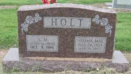 HOLT, A M - Mississippi County, Arkansas | A M HOLT - Arkansas Gravestone Photos