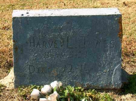 JAMES, HARVEY L - Mississippi County, Arkansas | HARVEY L JAMES - Arkansas Gravestone Photos
