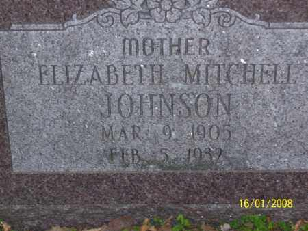 JOHNSON, ELIZABETH - Mississippi County, Arkansas | ELIZABETH JOHNSON - Arkansas Gravestone Photos