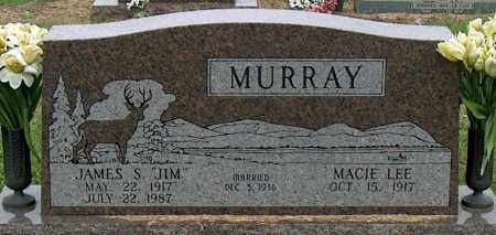 MURRAY, JAMES S - Mississippi County, Arkansas | JAMES S MURRAY - Arkansas Gravestone Photos