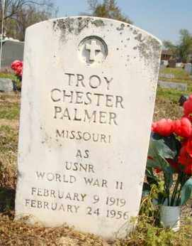 PALMER (VETERAN WWII), TROY CHESTER - Mississippi County, Arkansas | TROY CHESTER PALMER (VETERAN WWII) - Arkansas Gravestone Photos