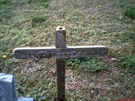 ROGERS, WILLIAM WESLEY - Mississippi County, Arkansas | WILLIAM WESLEY ROGERS - Arkansas Gravestone Photos