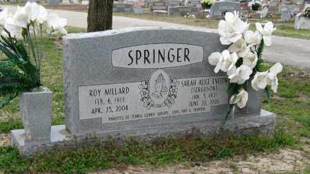 SPRINGER, SARAH ALICE EVELYN - Mississippi County, Arkansas | SARAH ALICE EVELYN SPRINGER - Arkansas Gravestone Photos