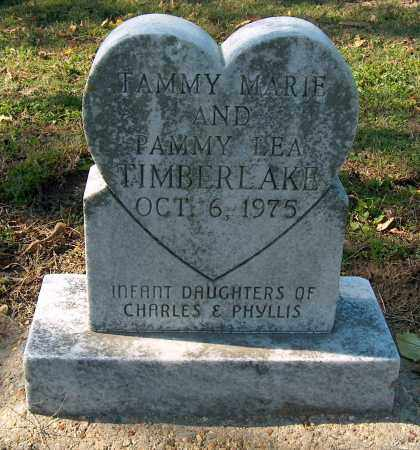 TIMBERLAKE, TAMMY MARIE - Mississippi County, Arkansas | TAMMY MARIE TIMBERLAKE - Arkansas Gravestone Photos