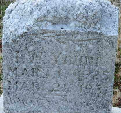 YOUNG, I. W. - Mississippi County, Arkansas | I. W. YOUNG - Arkansas Gravestone Photos